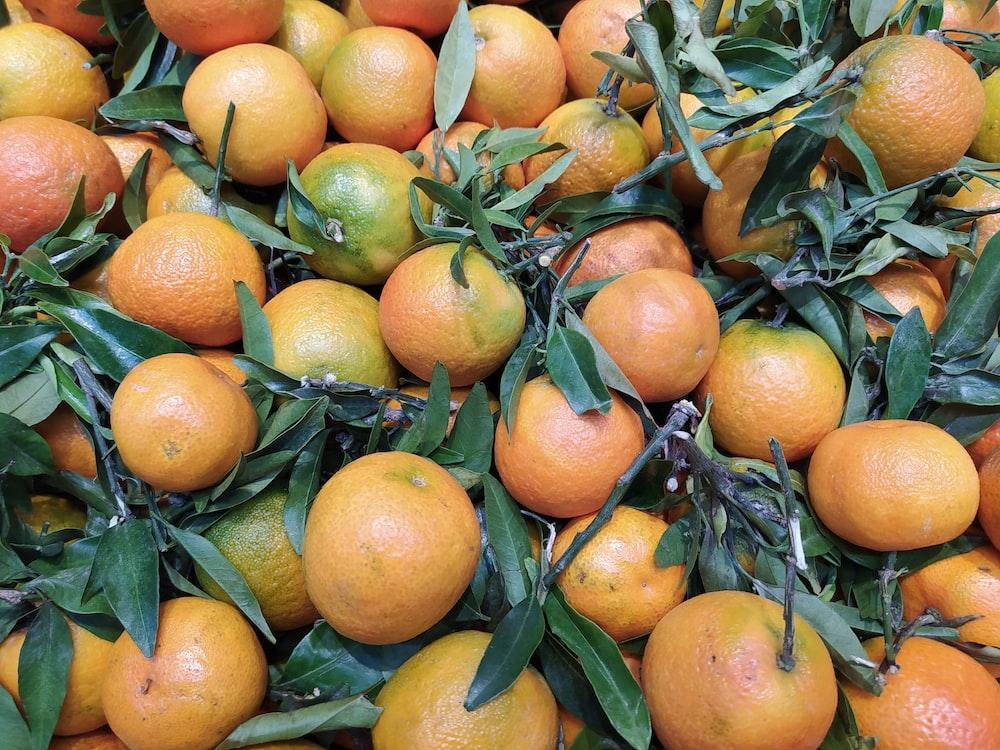 orange fruits on green grass