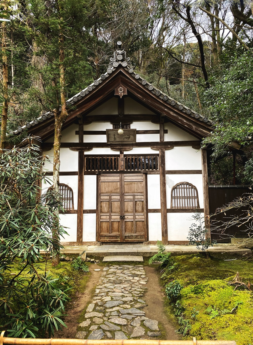 white and brown wooden house surrounded by green plants