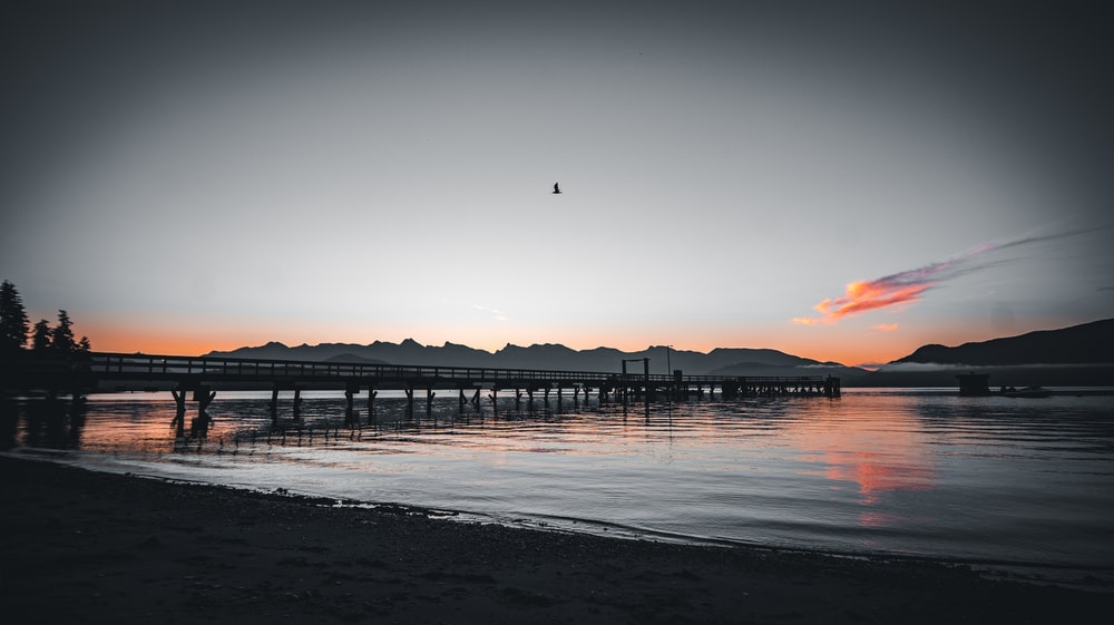 silhouette of bridge on sea during sunset
