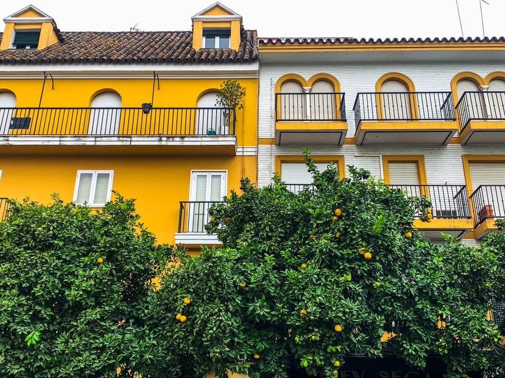 yellow and brown concrete house