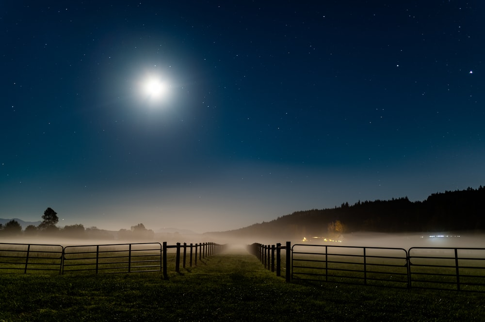 silhouette of fence on green grass field during night time