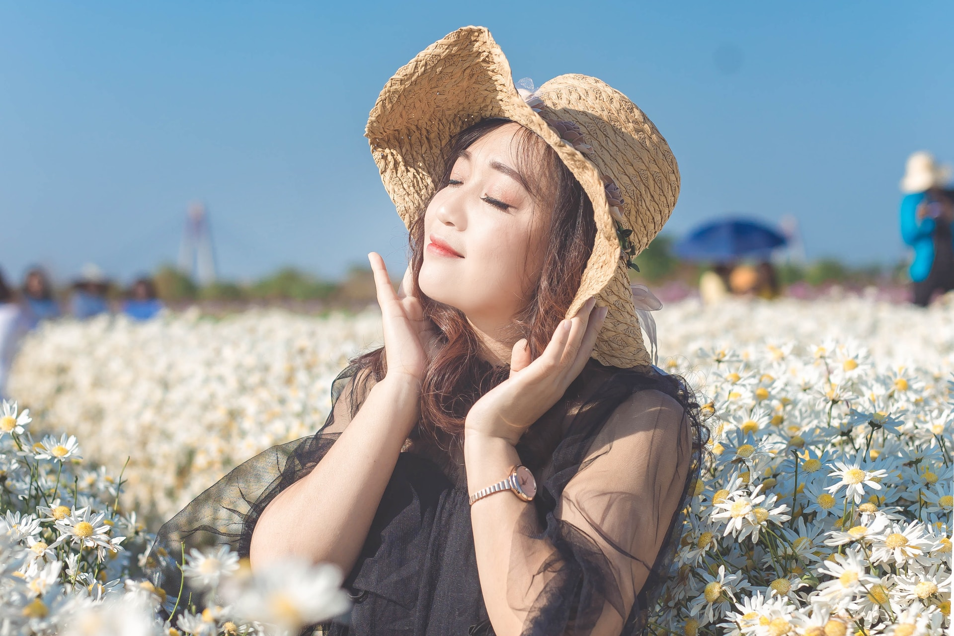 woman in brown sun hat sitting on white flower field during daytime