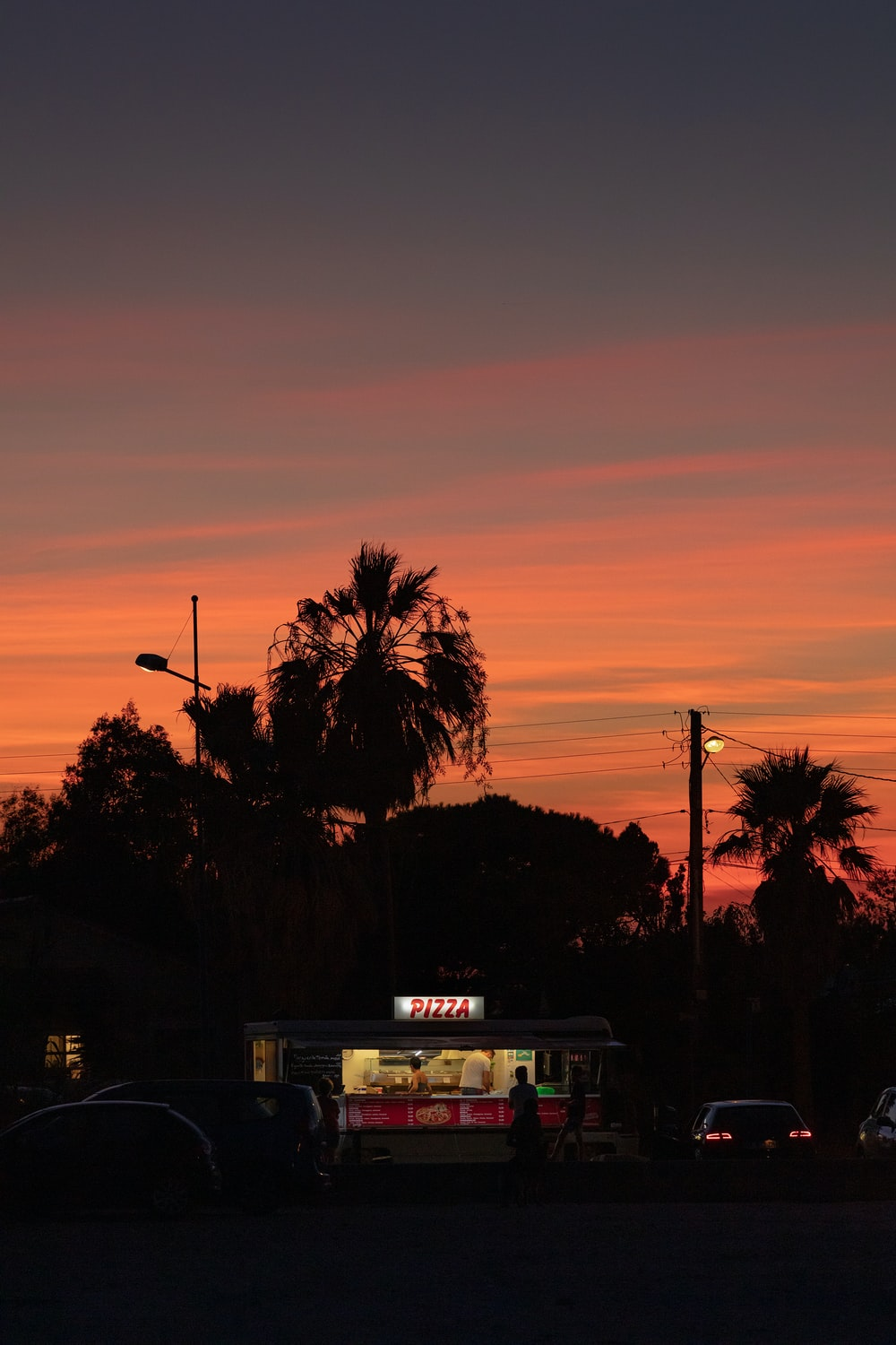 palm tree near white and black bus during sunset