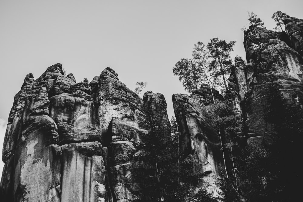 grayscale photo of trees and rock formation
