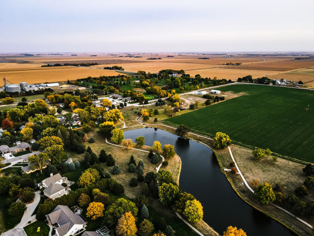 aerial view of green grass field and trees during daytime