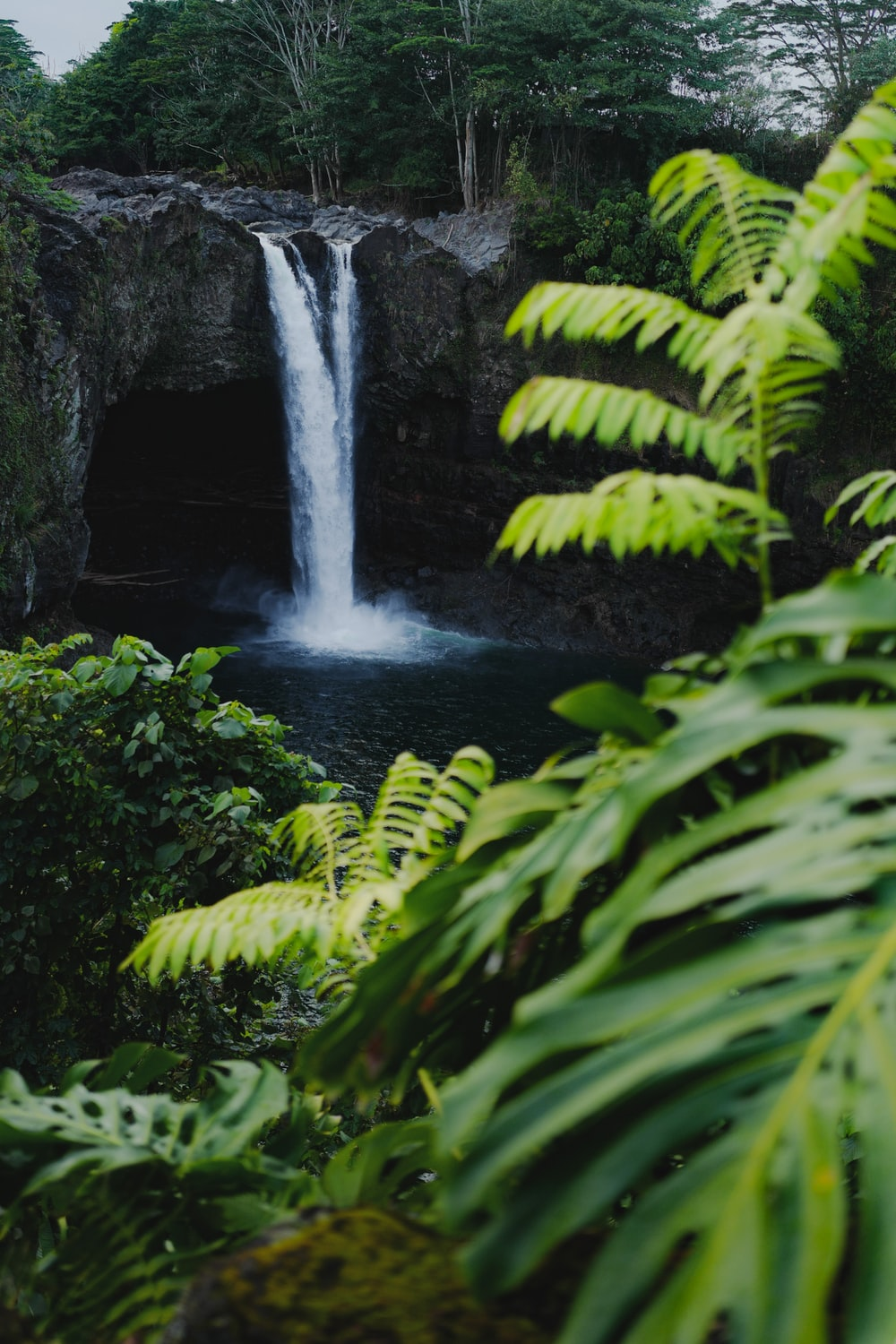waterfalls in the middle of green moss covered rocks