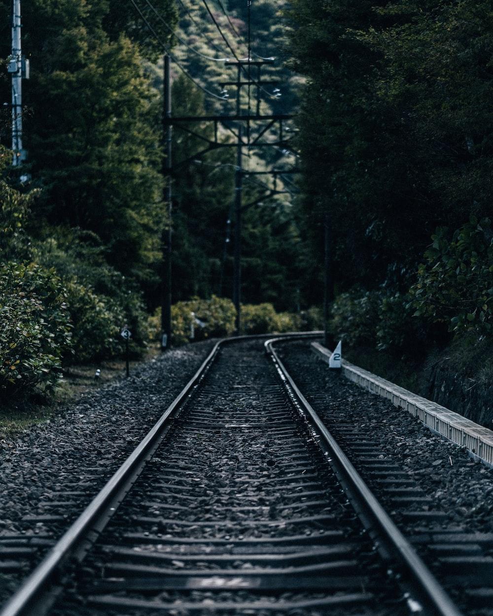 black metal train rail near green trees during daytime