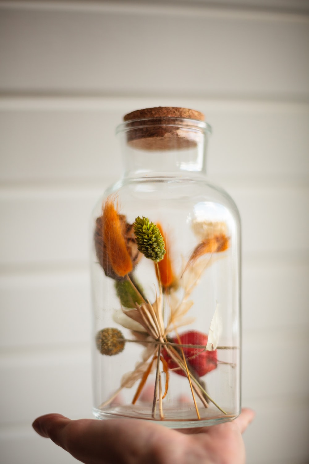 yellow and green plant in clear glass jar