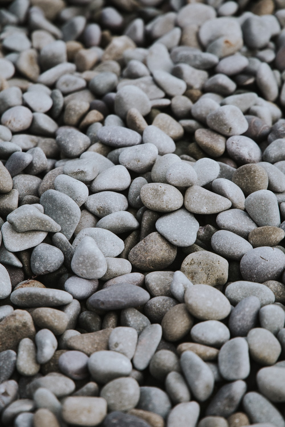 gray and black pebbles during daytime