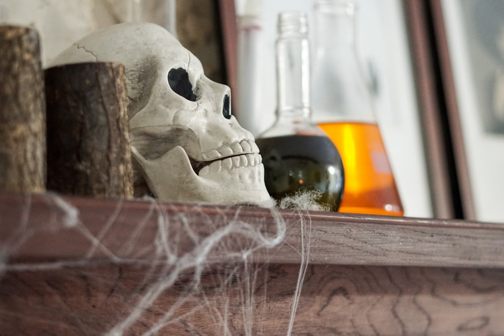 white skull on brown wooden table