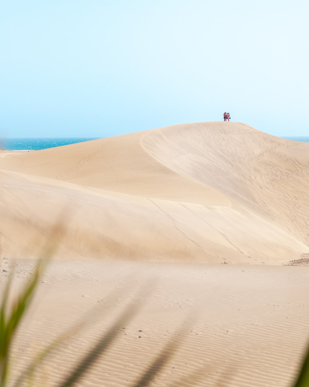 person standing on brown sand near body of water during daytime