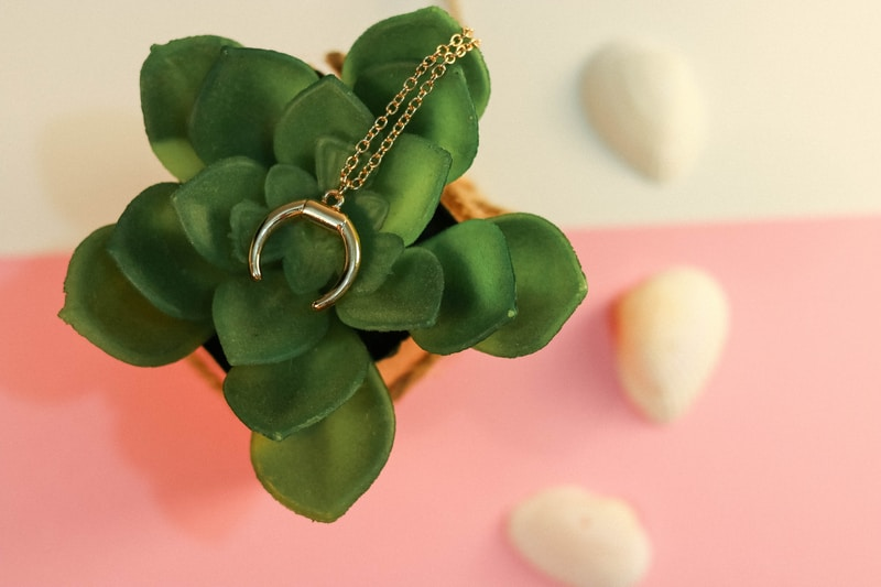 gold ring on green plant