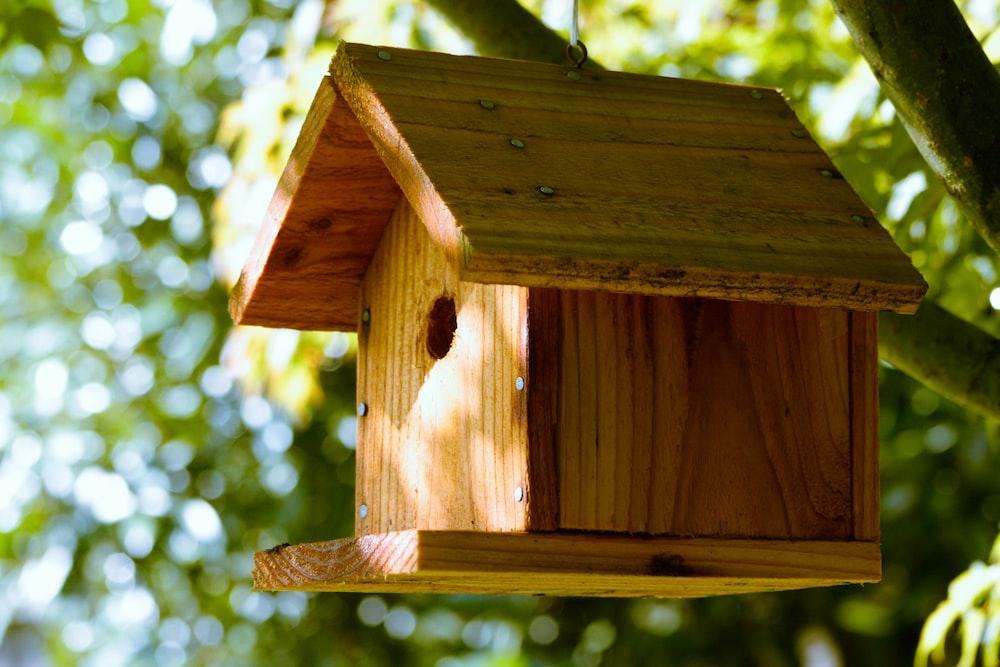 brown wooden bird house during daytime