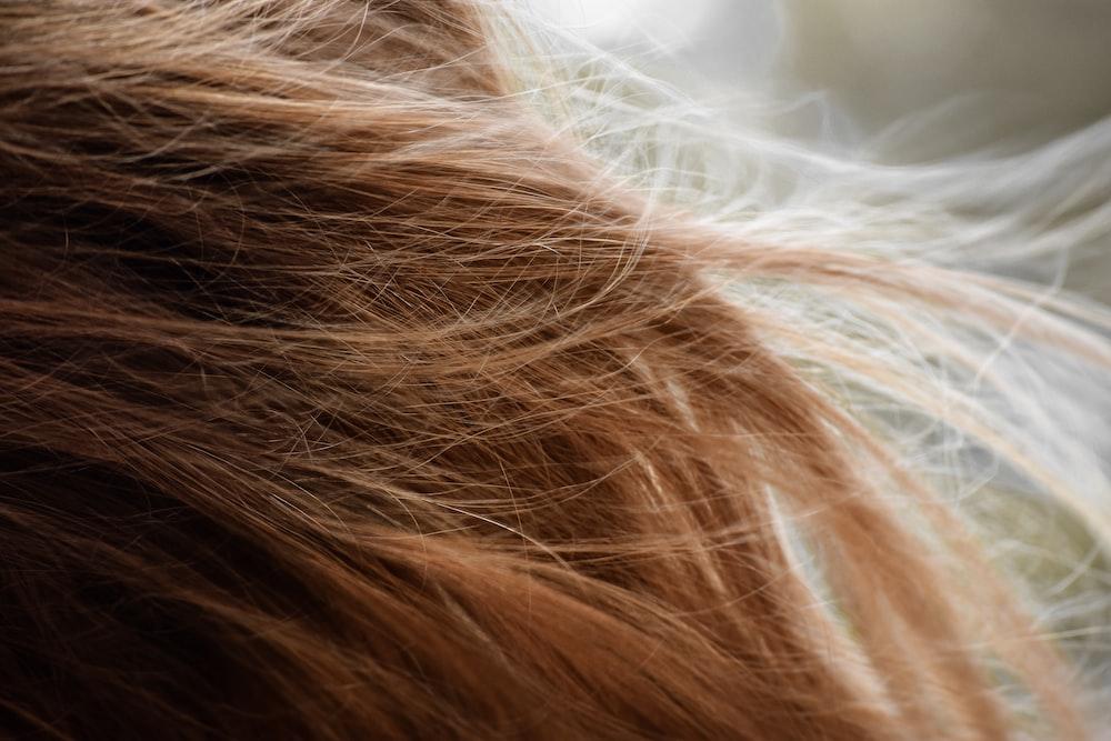 brown hair on white textile