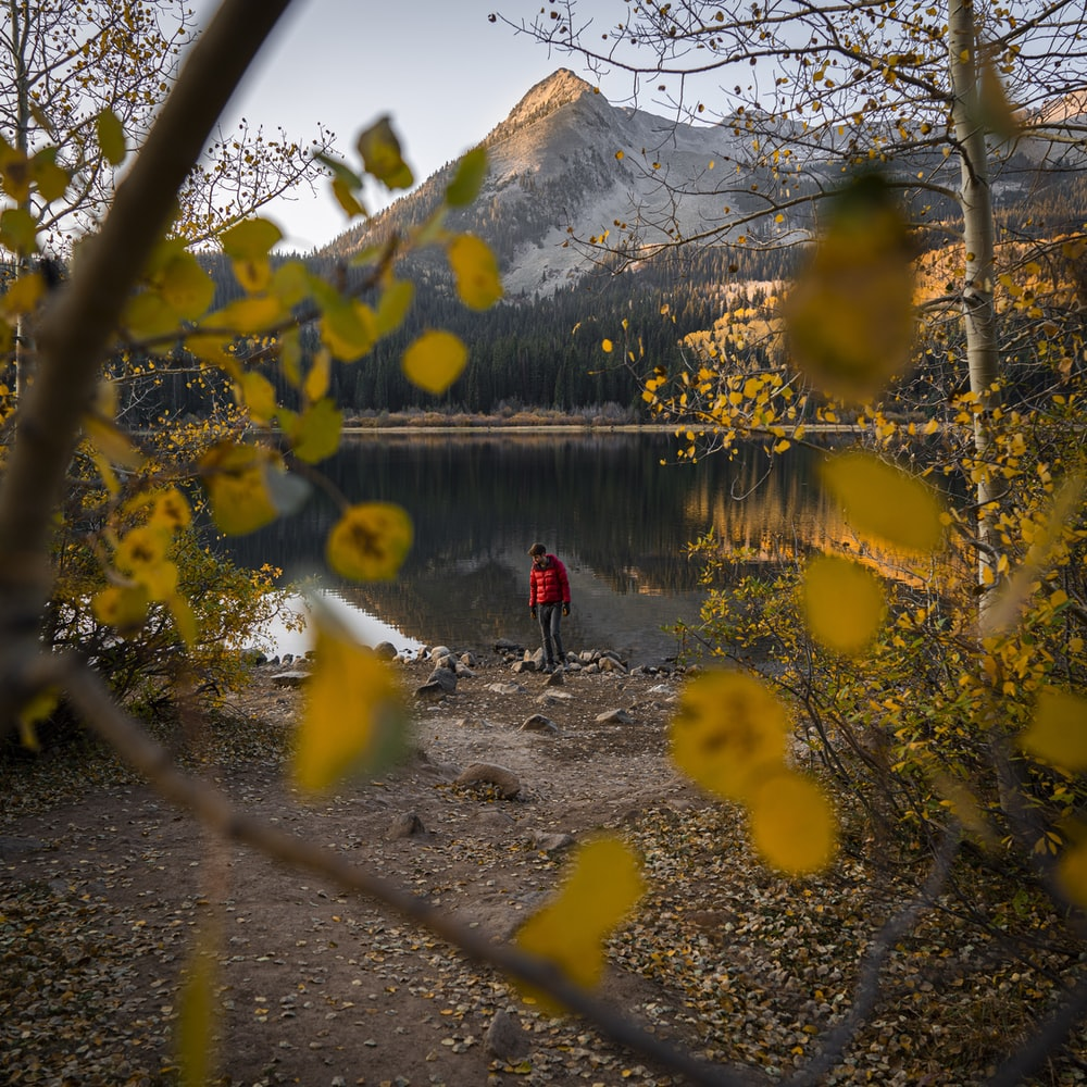 person in red jacket standing near lake during daytime