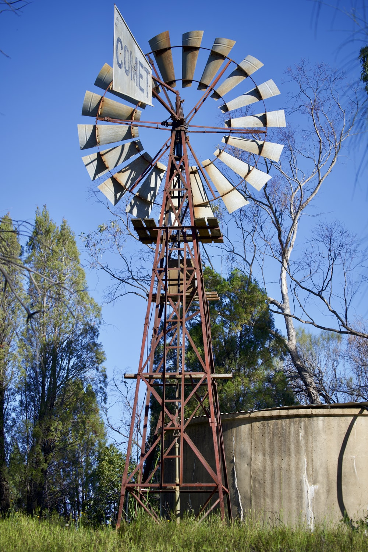 brown and white ferris wheel