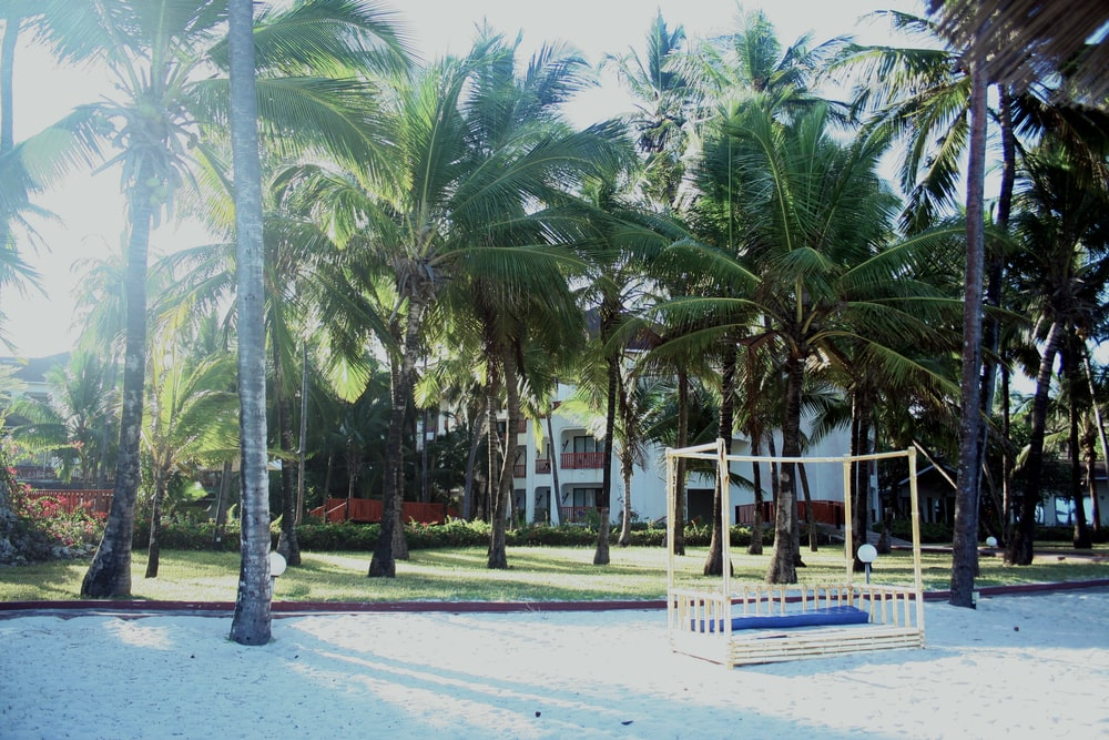 People Standing On White Sand Beach During Daytime
