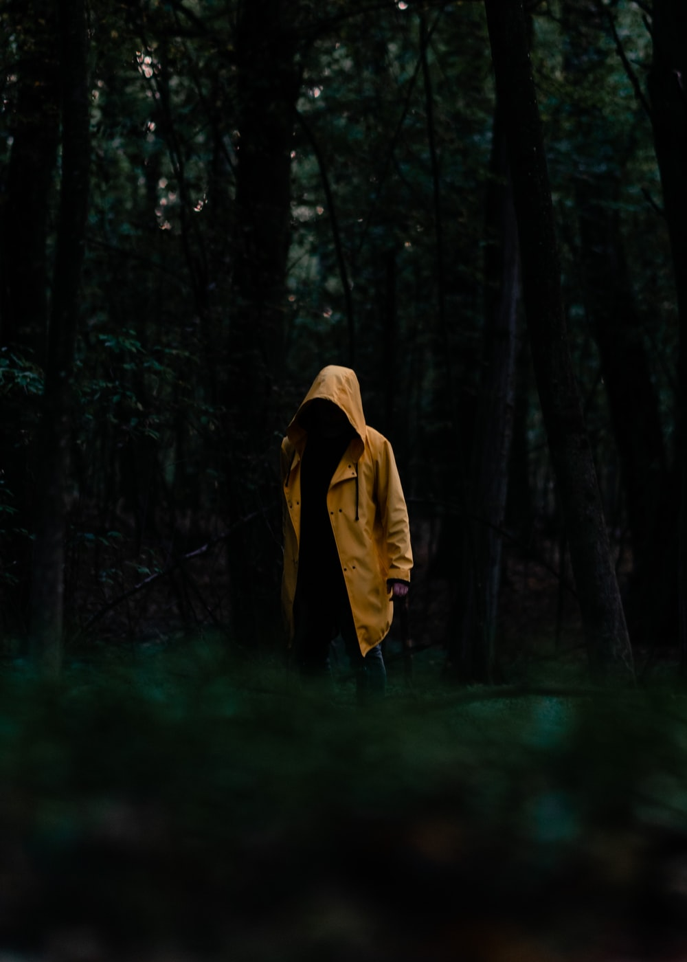 person in yellow hoodie standing in the woods