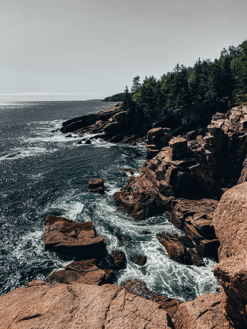 brown rocky shore with green trees and ocean waves during daytime