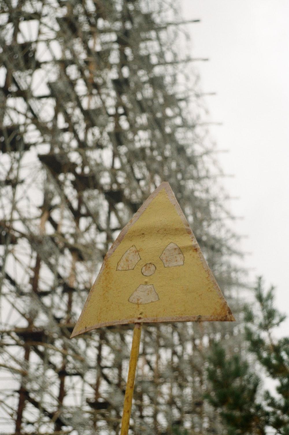 yellow umbrella near bare trees during daytime