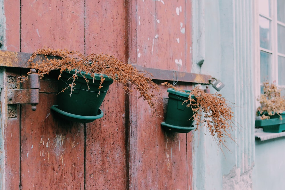 green plastic bucket on brown wooden wall
