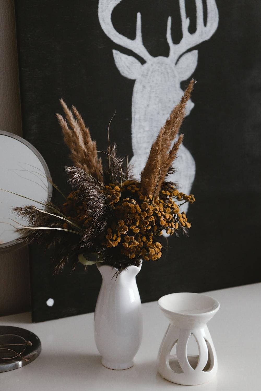 brown and white plant on white ceramic vase