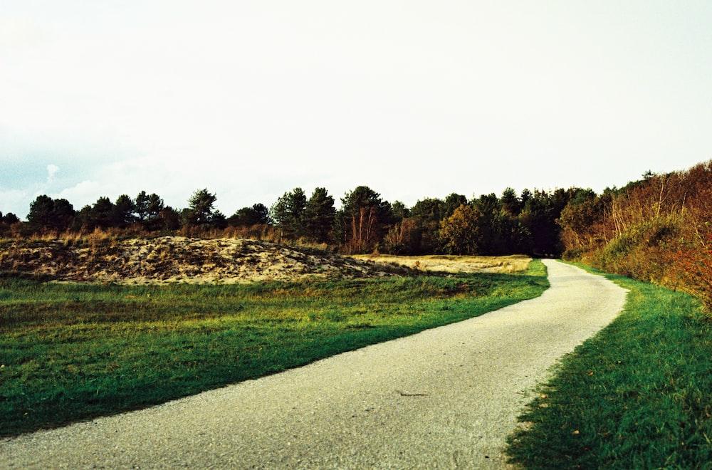 green grass field near gray concrete road