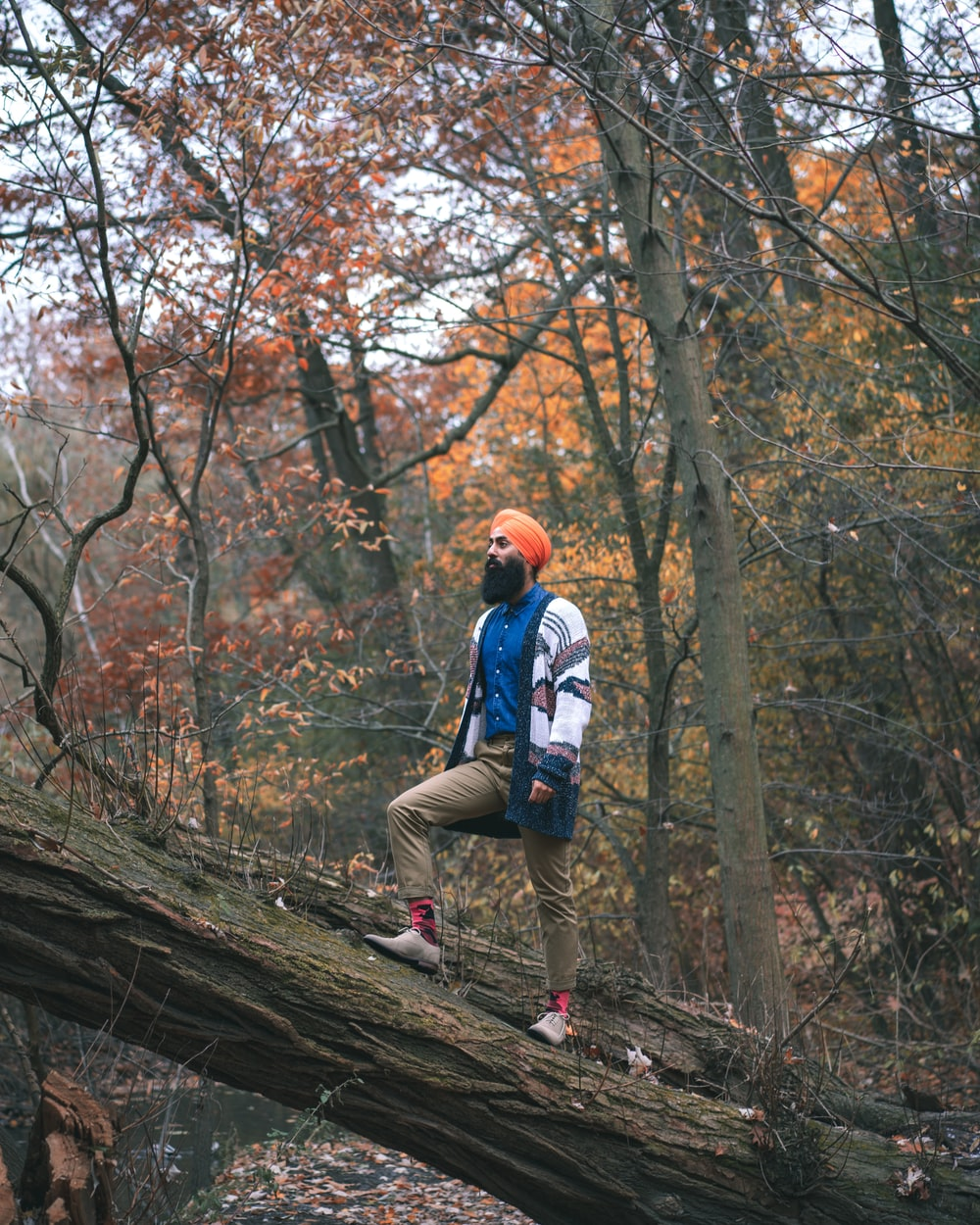 man in blue jacket and brown pants wearing blue backpack walking on brown tree log during