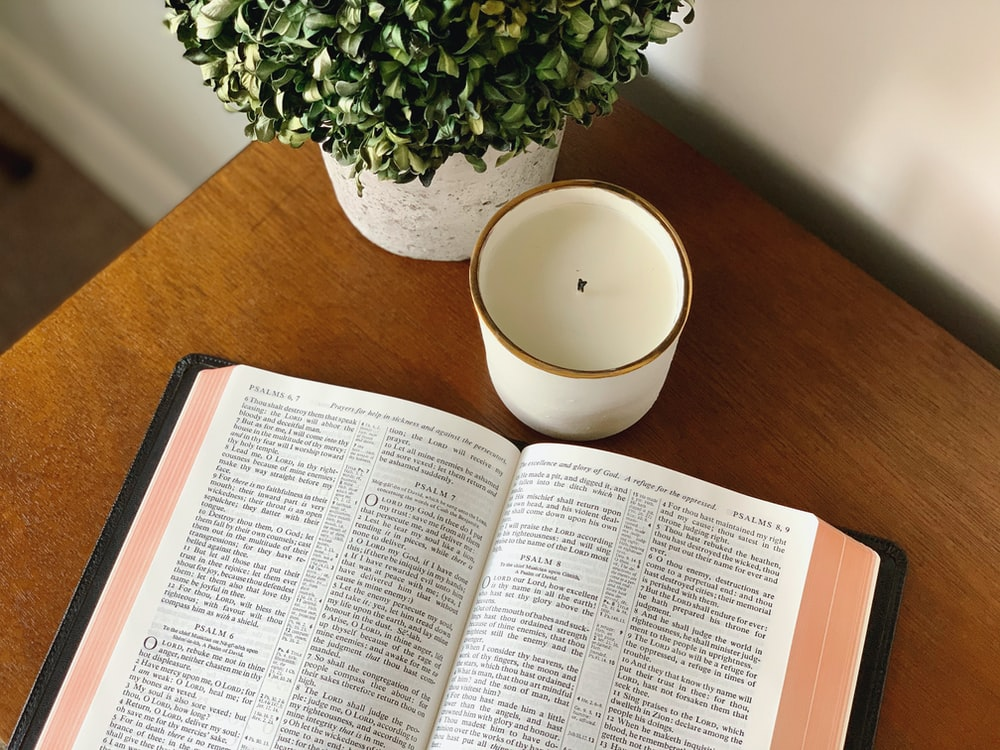 white book page beside green plant on brown wooden table