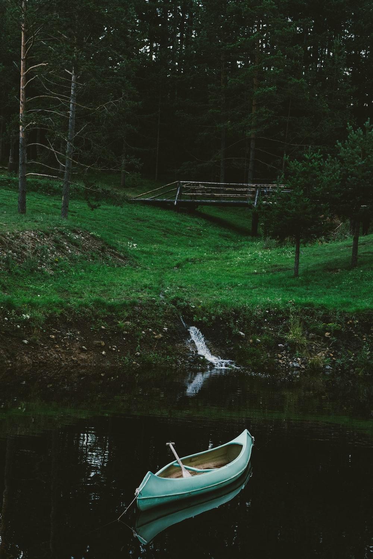 white canoe on green grass field near lake during daytime