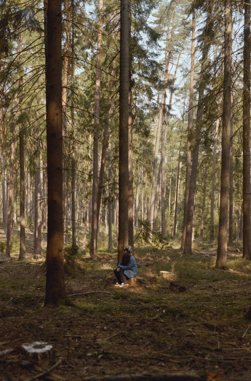 person in black jacket sitting on ground surrounded by trees during daytime