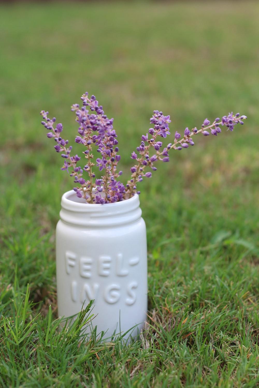 purple flowers in white ceramic vase on green grass during daytime