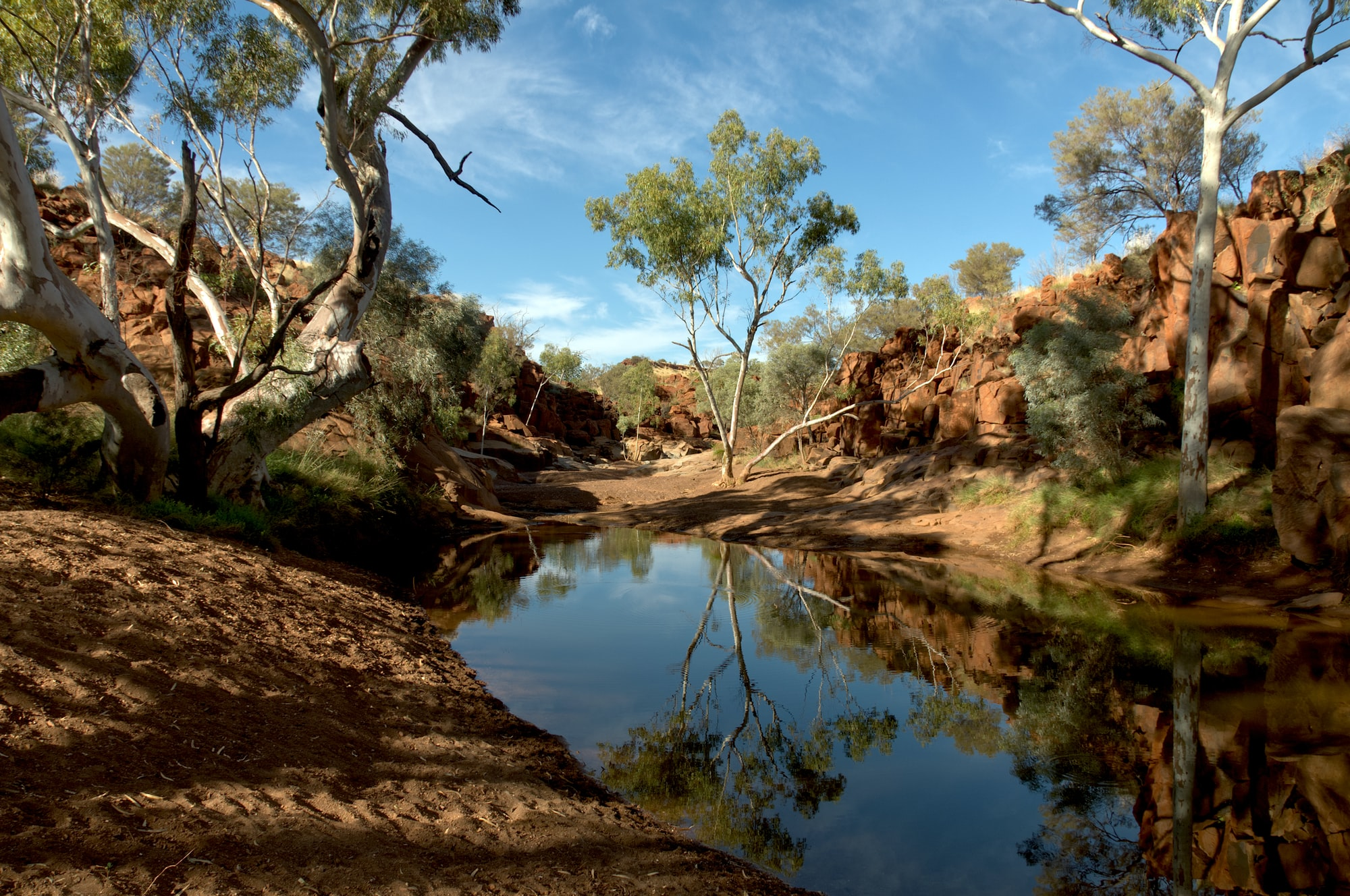 Part of Weeli Wolli Creek a billabong in Western Australia. This is in April heading into winter; best time of year as it doesn't get too hot (in summer 49C/120F). Near the mining town of Newman. Could only get here by 4-wheel drive & a short hike. Indigenous Australian rock carvings - upwards to 45,000 years old - on the surrounding rock.