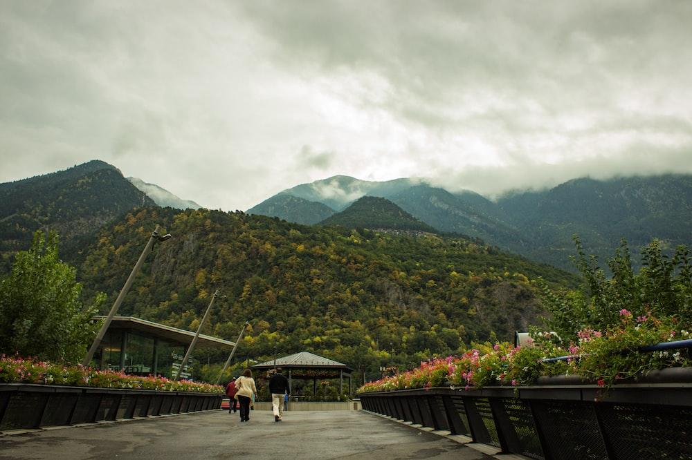 people walking on wooden bridge near green mountain during daytime