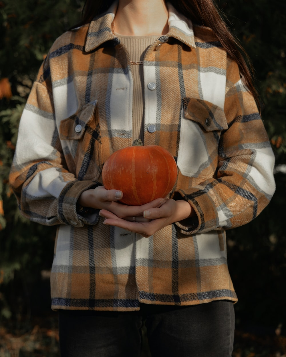 person in brown and white plaid button up shirt holding red apple