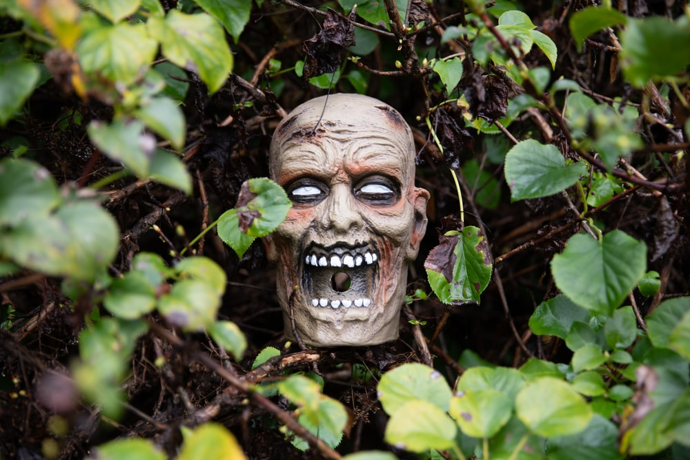 brown wooden mask on green plants