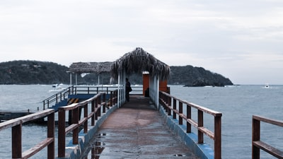 brown wooden dock on sea during daytime zihuatanejo zoom background