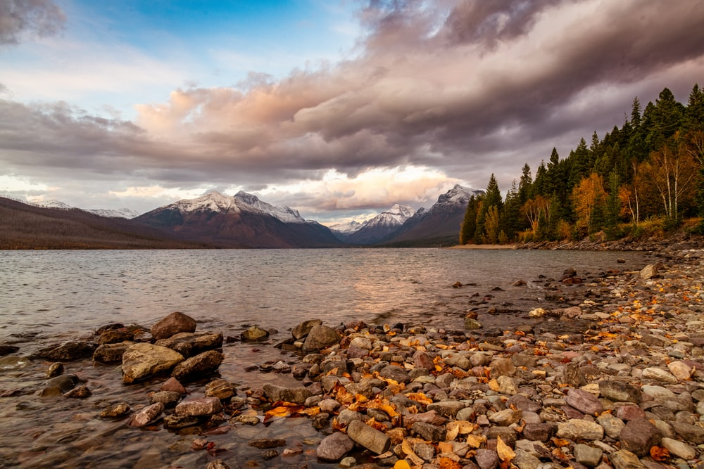 brown rocks on body of water near green trees and mountain under white clouds during daytime