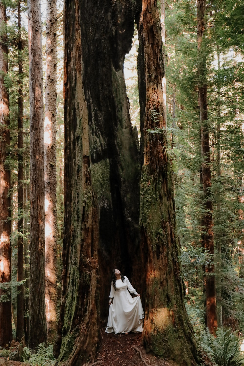 woman in white jacket standing in the middle of the forest during daytime