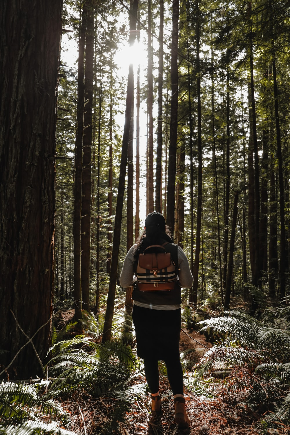 woman in black and orange backpack standing in the woods during daytime