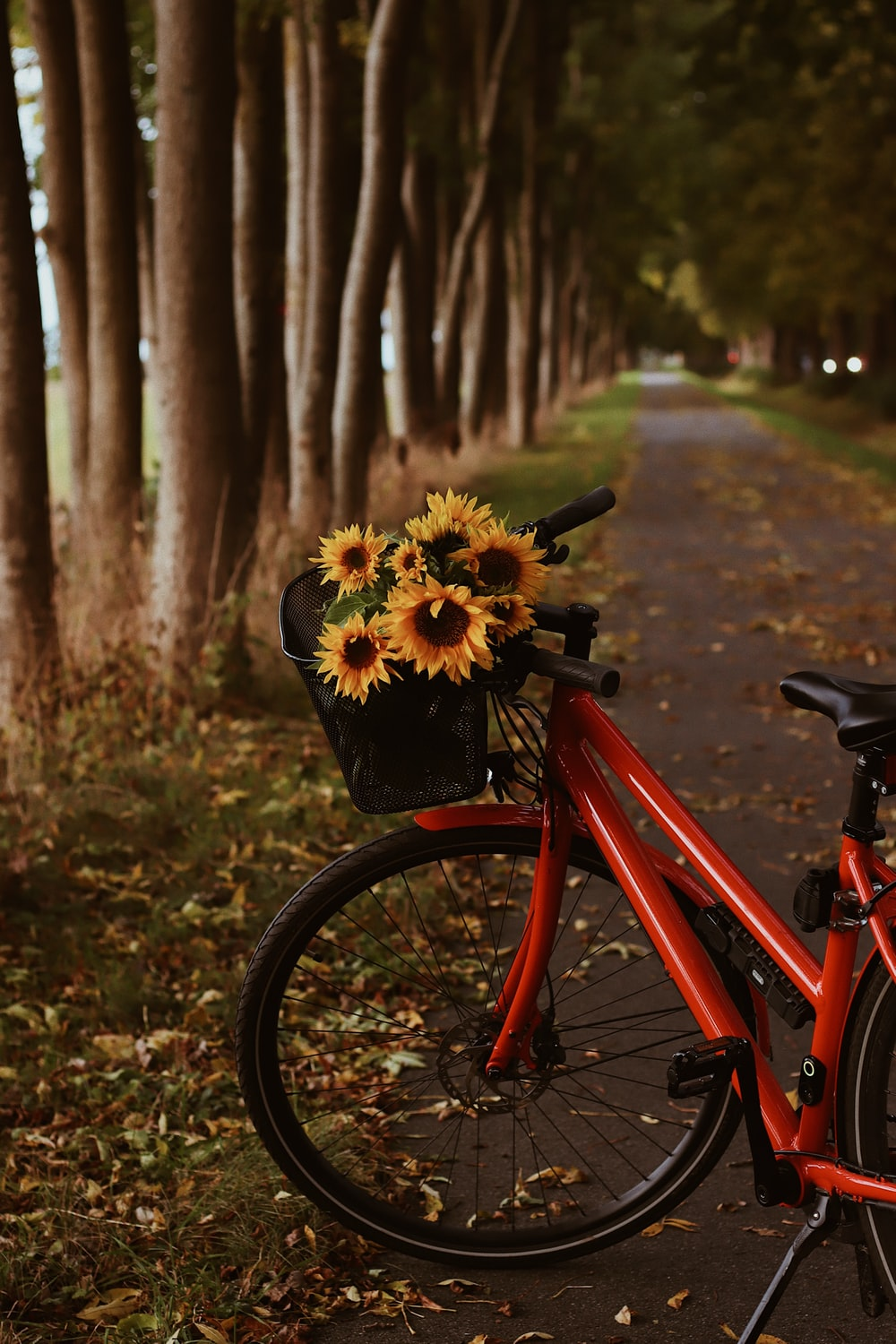 red bicycle with yellow flowers on top