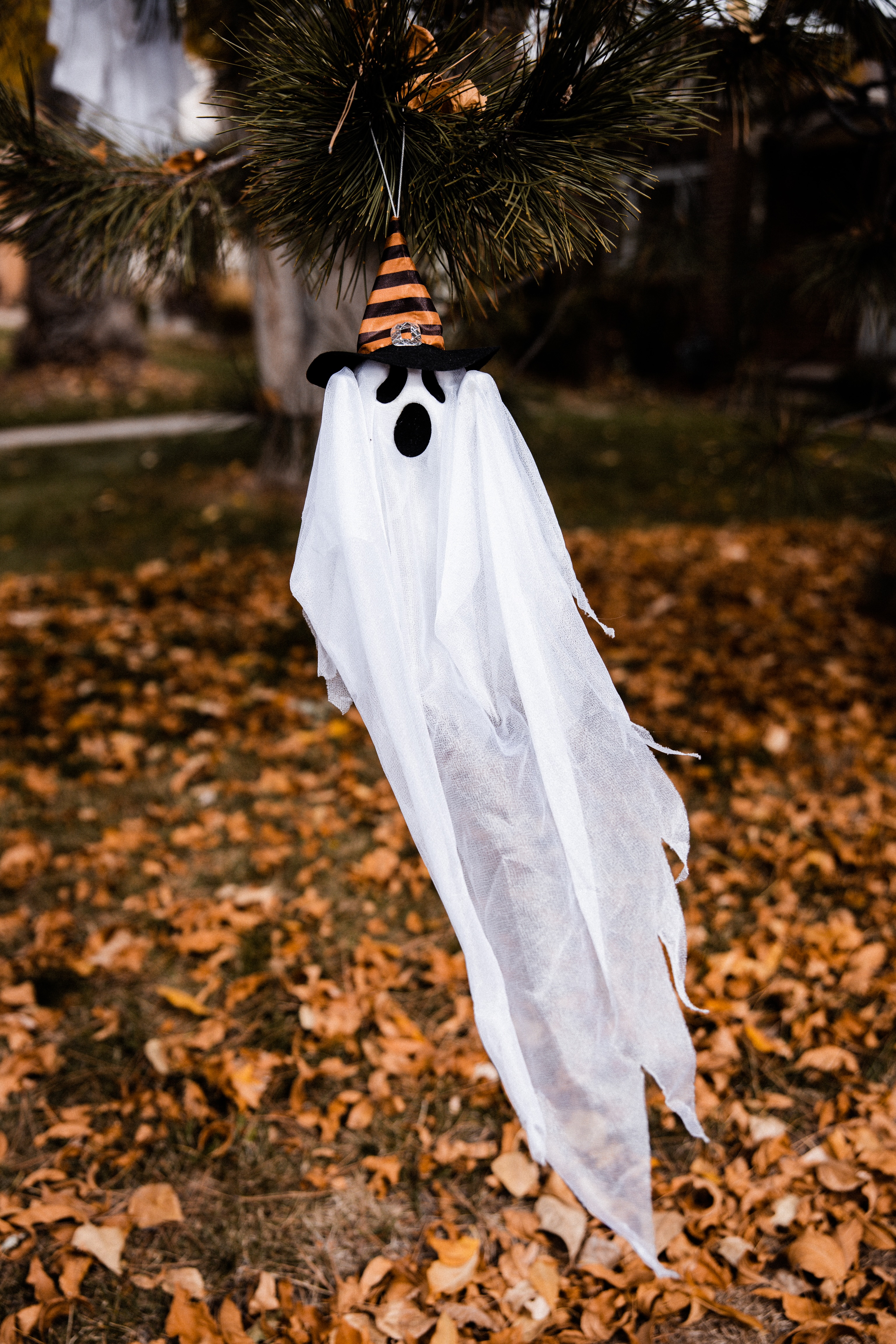 woman-in-white-dress-standing-on-dried-leaves-during-daytime