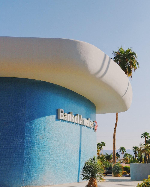 palm trees near blue concrete building
