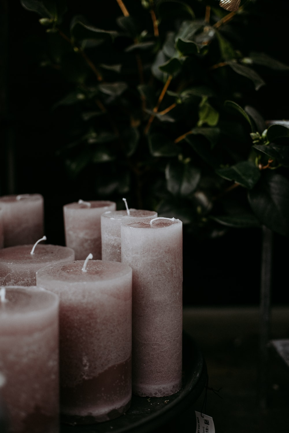 3 pink pillar candles with green leaves