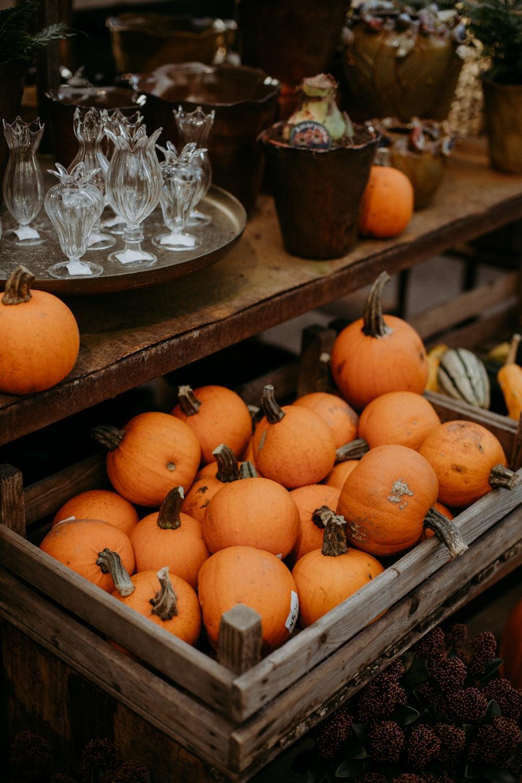 orange pumpkins on clear glass bowl