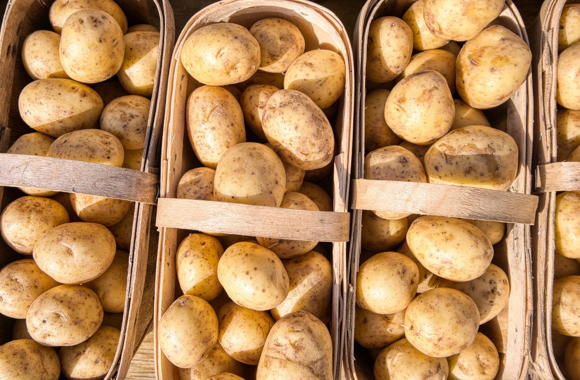 A close view of baskets of potatoes