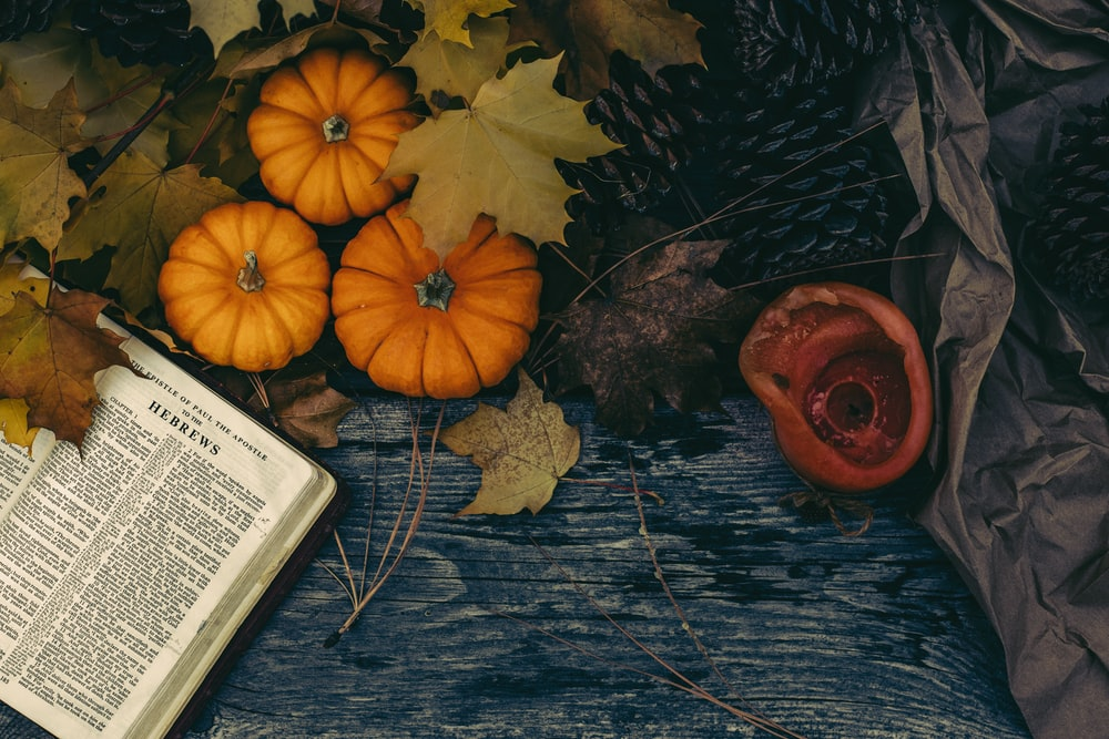 orange pumpkin on black and brown floral textile