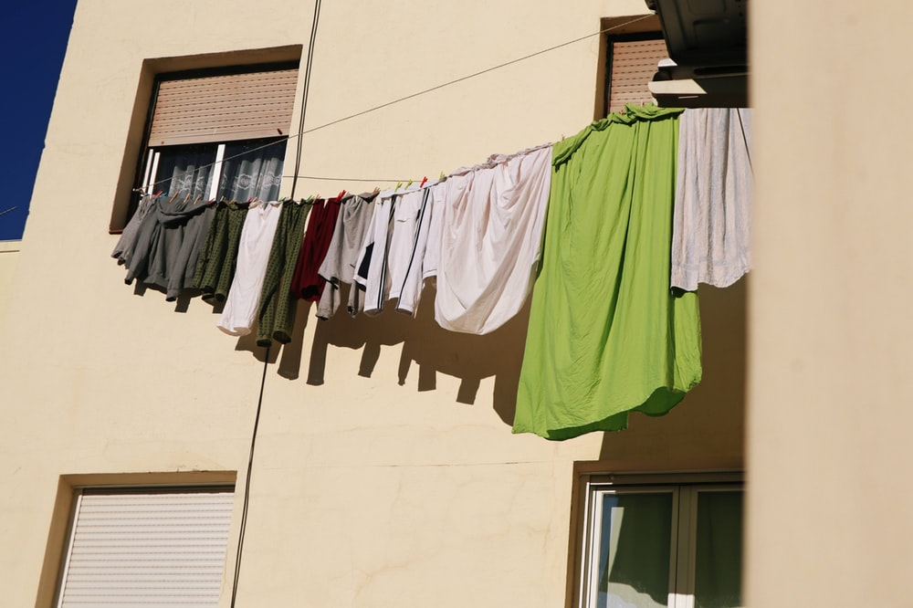 clothes hanged on clothes hanger