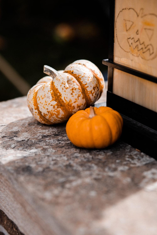 orange pumpkin on gray concrete