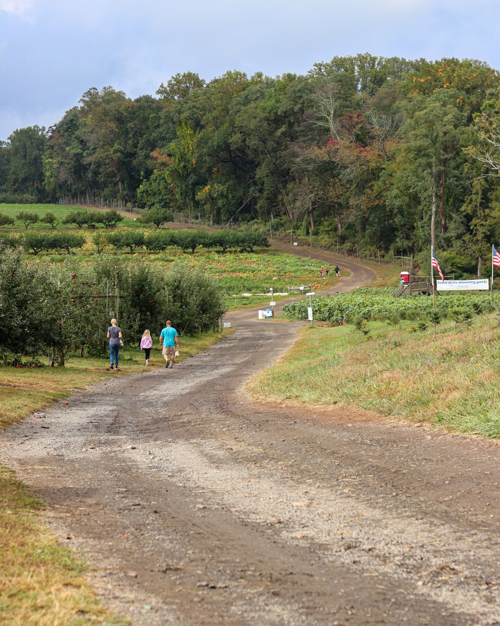 people walking on dirt road near green grass field during daytime